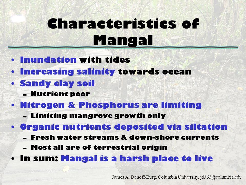 Characteristics of Mangal