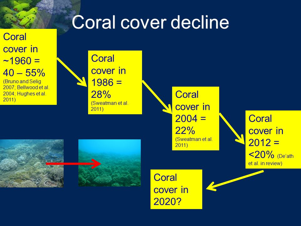 Coral cover decline Coral cover in ~1960 = 40 – 55% (Bruno and Selig 2007; Bellwood et al. 2004; Hughes et al. 2011)