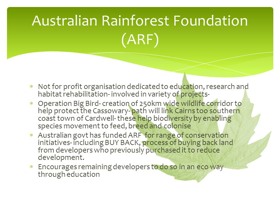 Australian Rainforest Foundation (ARF)