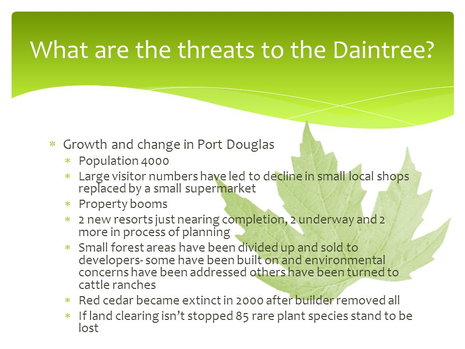 What are the threats to the Daintree