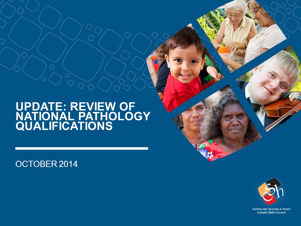 UPDATE: REVIEW OF NATIONAL PATHOLOGY QUALIFICATIONS