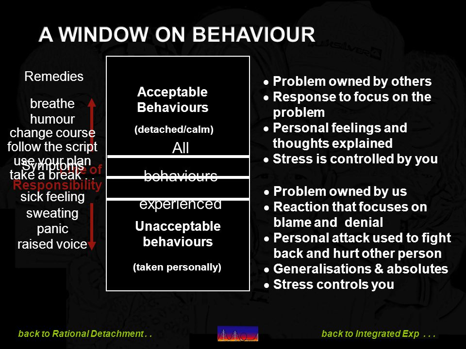 A WINDOW ON BEHAVIOUR All behaviours experienced Remedies