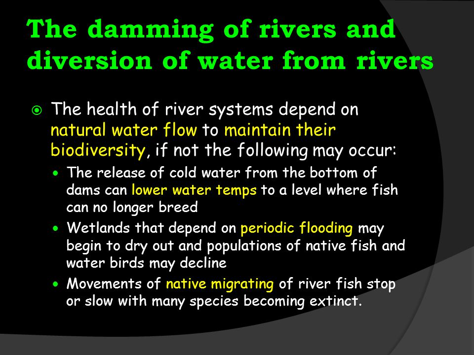 The damming of rivers and diversion of water from rivers