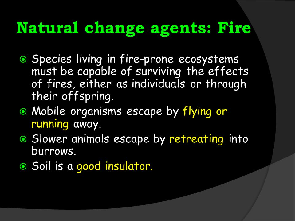 Natural change agents: Fire