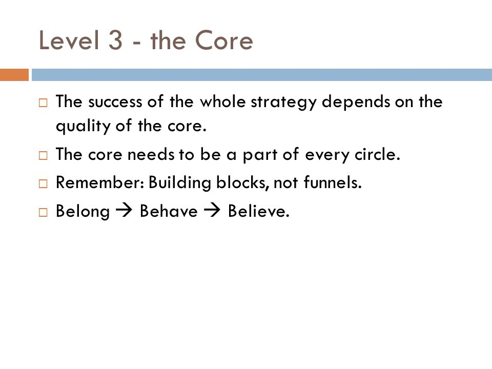Level 3 - the Core The success of the whole strategy depends on the quality of the core. The core needs to be a part of every circle.