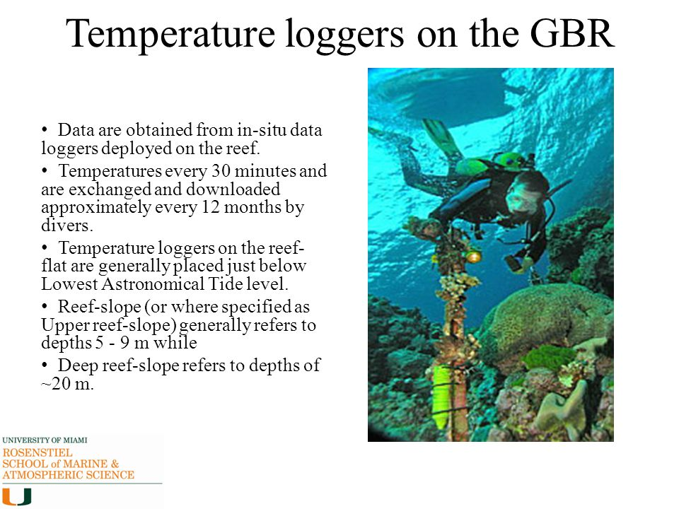 Temperature loggers on the GBR