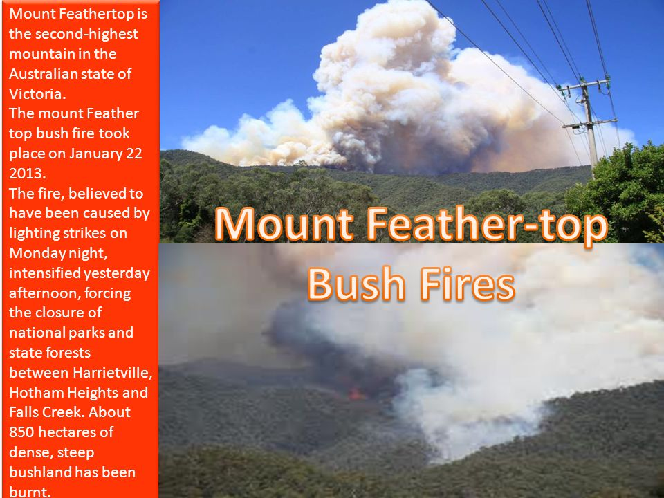 Mount Feather-top Bush Fires