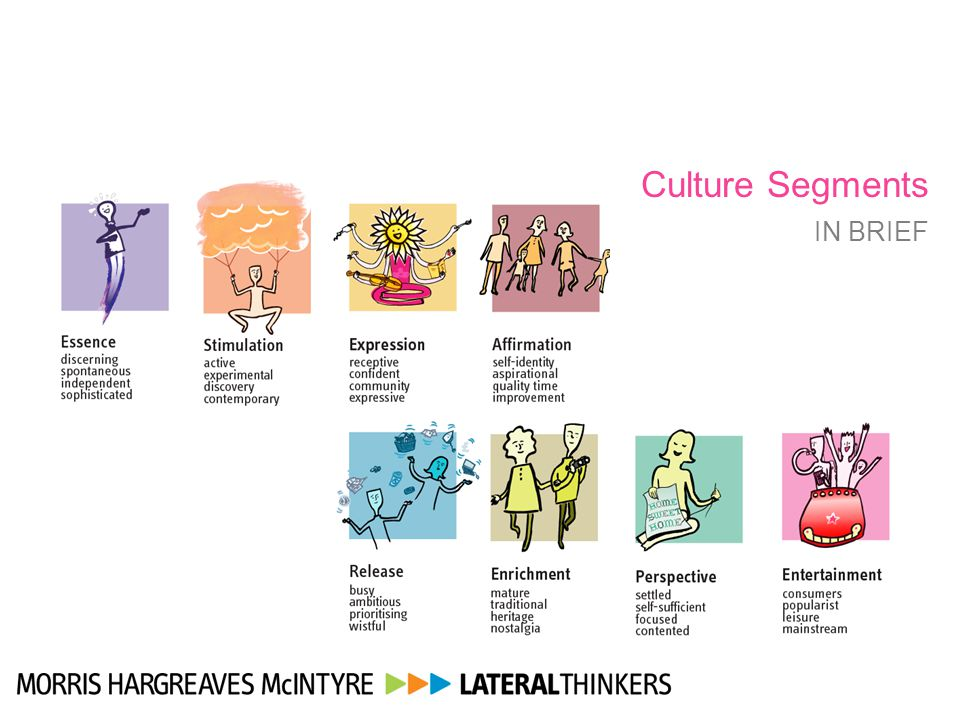 Culture Segments IN BRIEF 16