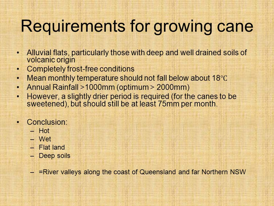 Requirements for growing cane
