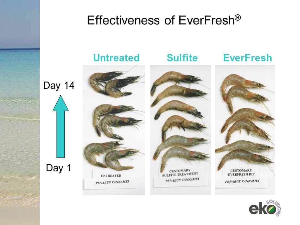 Effectiveness of EverFresh®