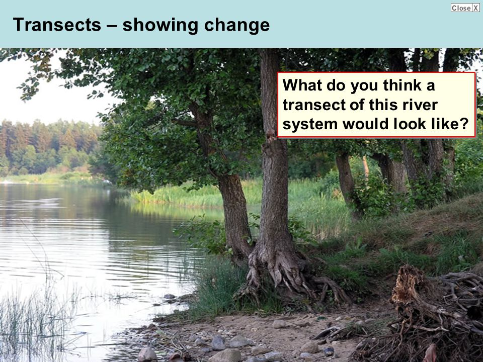 Transects – showing change
