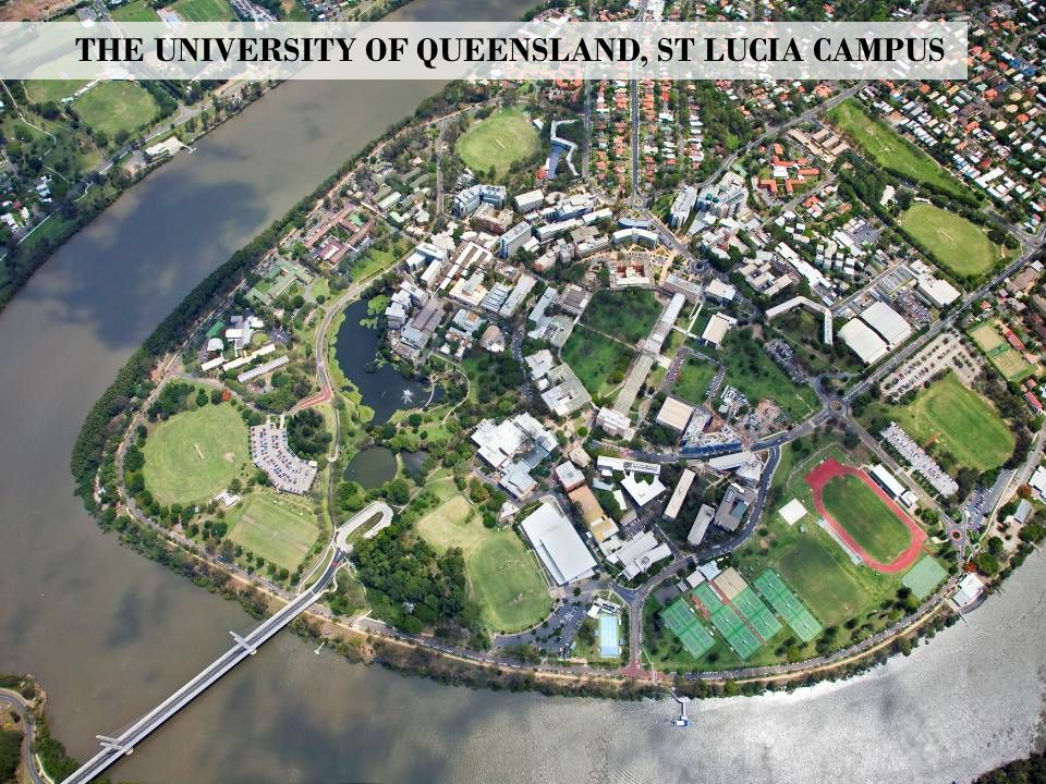THE UNIVERSITY OF QUEENSLAND, ST LUCIA CAMPUS