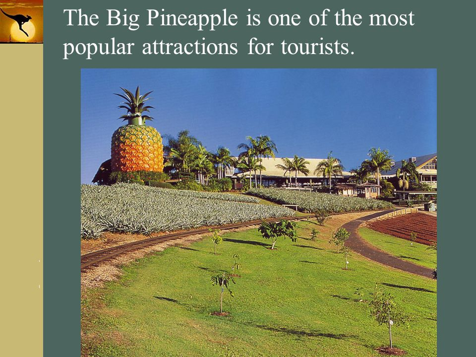 The Big Pineapple is one of the most popular attractions for tourists.