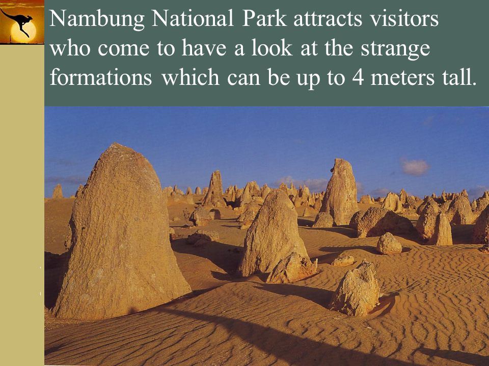 Nambung National Park attracts visitors who come to have a look at the strange formations which can be up to 4 meters tall.
