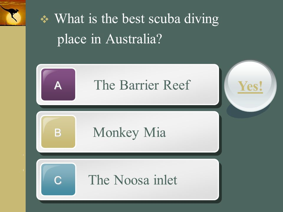 place in Australia The Barrier Reef Yes! Monkey Mia The Noosa inlet