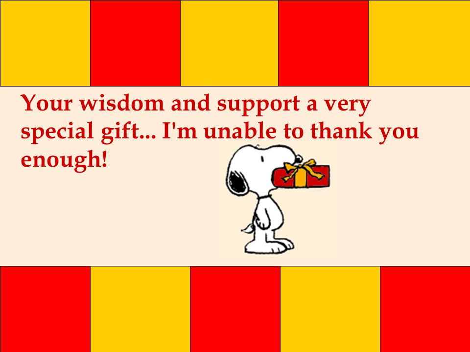 Your wisdom and support a very special gift