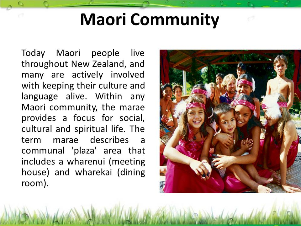 Maori Community
