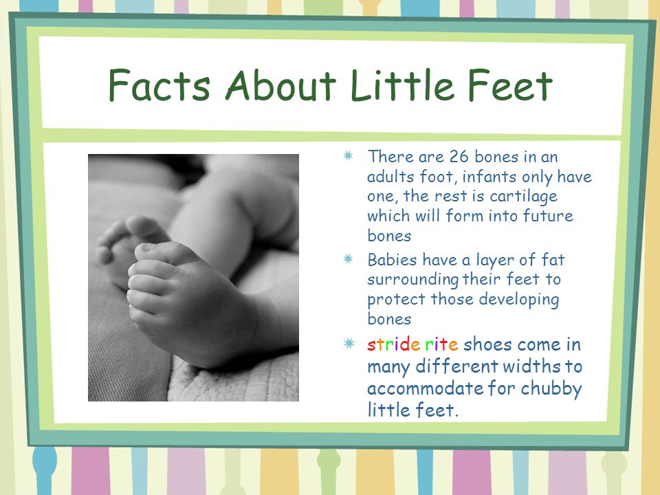 Facts About Little Feet