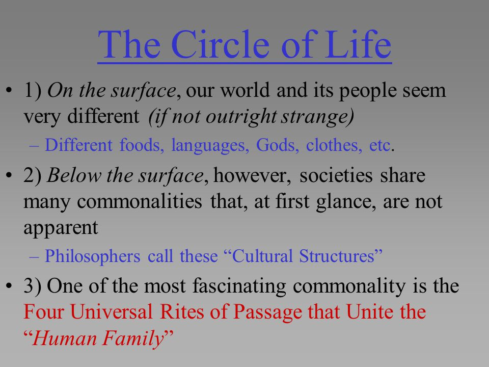 The Circle of Life 1) On the surface, our world and its people seem very different (if not outright strange)