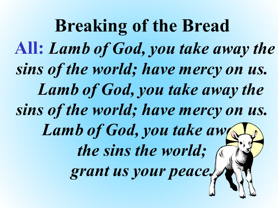 Breaking of the Bread All: Lamb of God, you take away the sins of the world; have mercy on us.