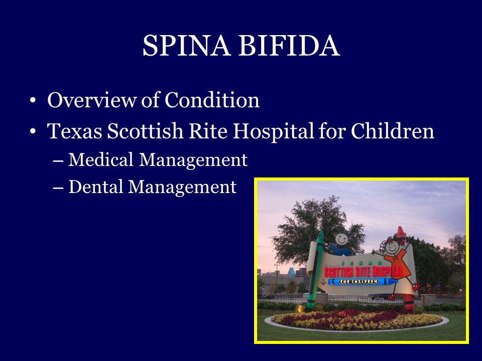 SPINA BIFIDA Overview of Condition