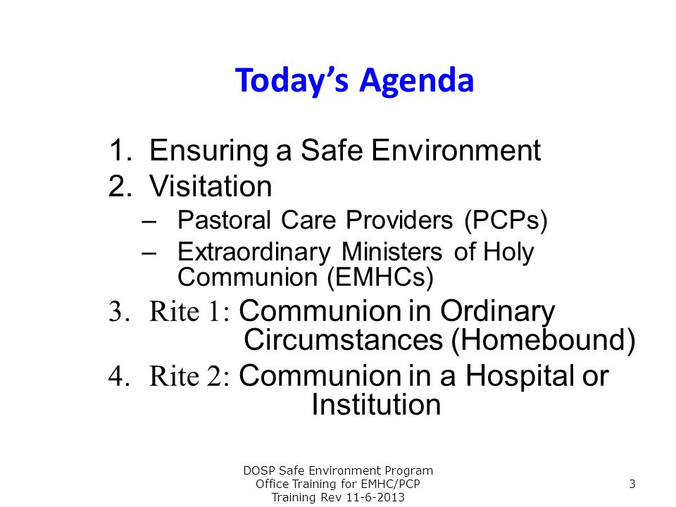 Today's Agenda Ensuring a Safe Environment Visitation