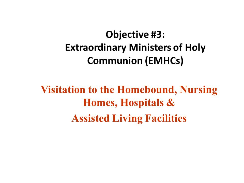 Objective #3: Extraordinary Ministers of Holy Communion (EMHCs)