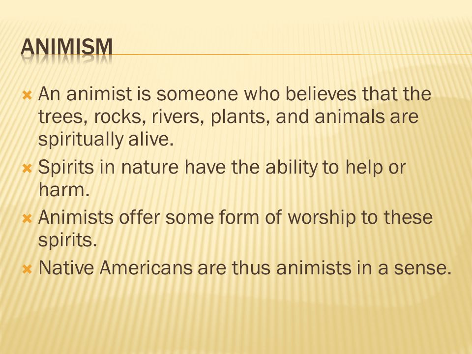 animism An animist is someone who believes that the trees, rocks, rivers, plants, and animals are spiritually alive.