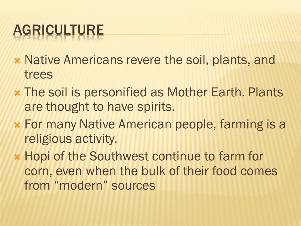 agriculture Native Americans revere the soil, plants, and trees