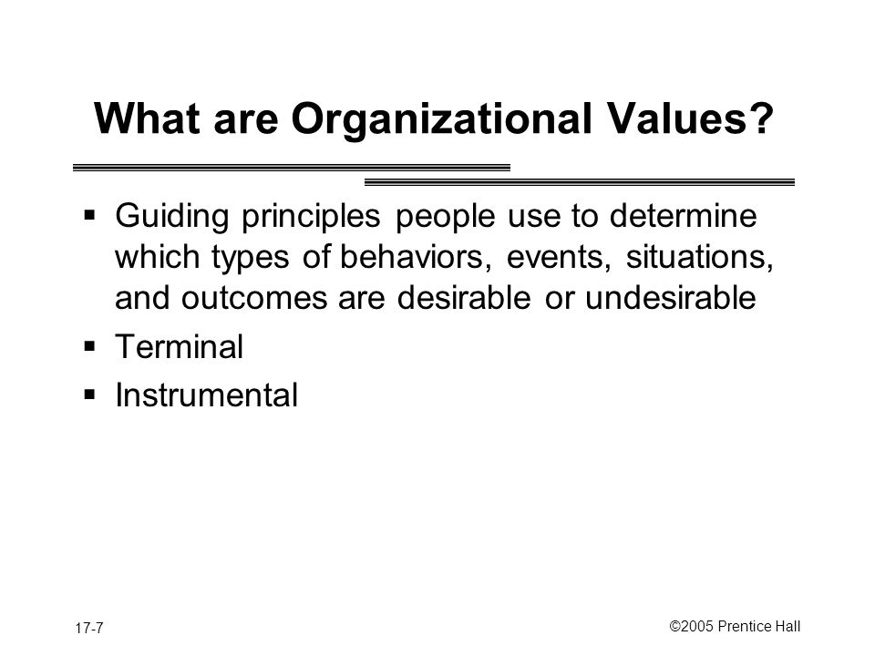 What are Organizational Values
