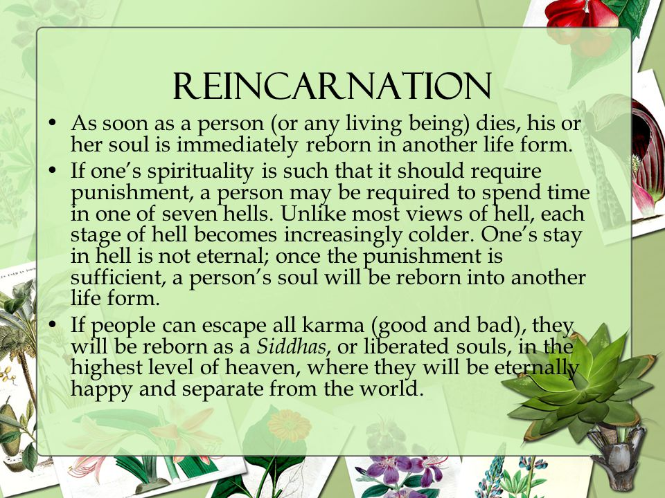 Reincarnation As soon as a person (or any living being) dies, his or her soul is immediately reborn in another life form.