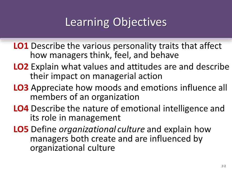 Learning Objectives LO1 Describe the various personality traits that affect how managers think, feel, and behave.