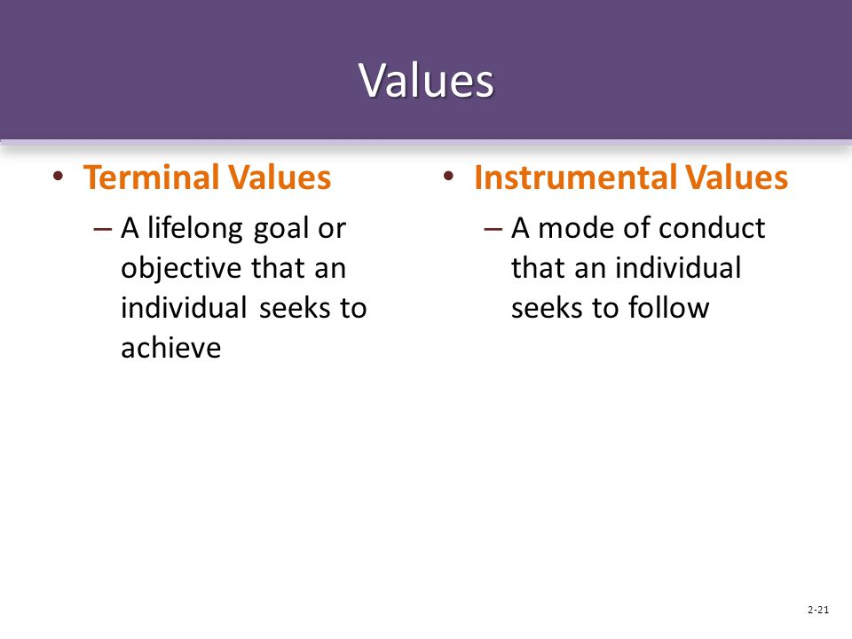 Values Terminal Values Instrumental Values