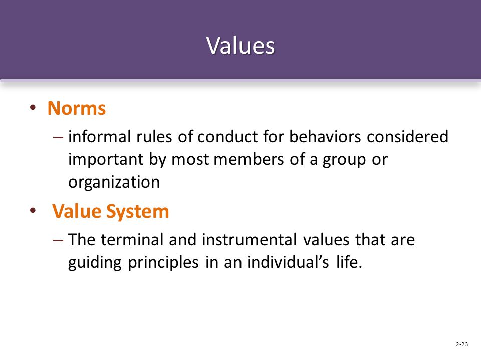 Values Norms Value System