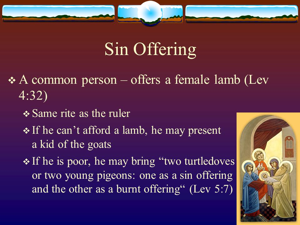 Sin Offering A common person – offers a female lamb (Lev 4:32)