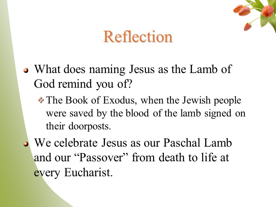 Reflection What does naming Jesus as the Lamb of God remind you of