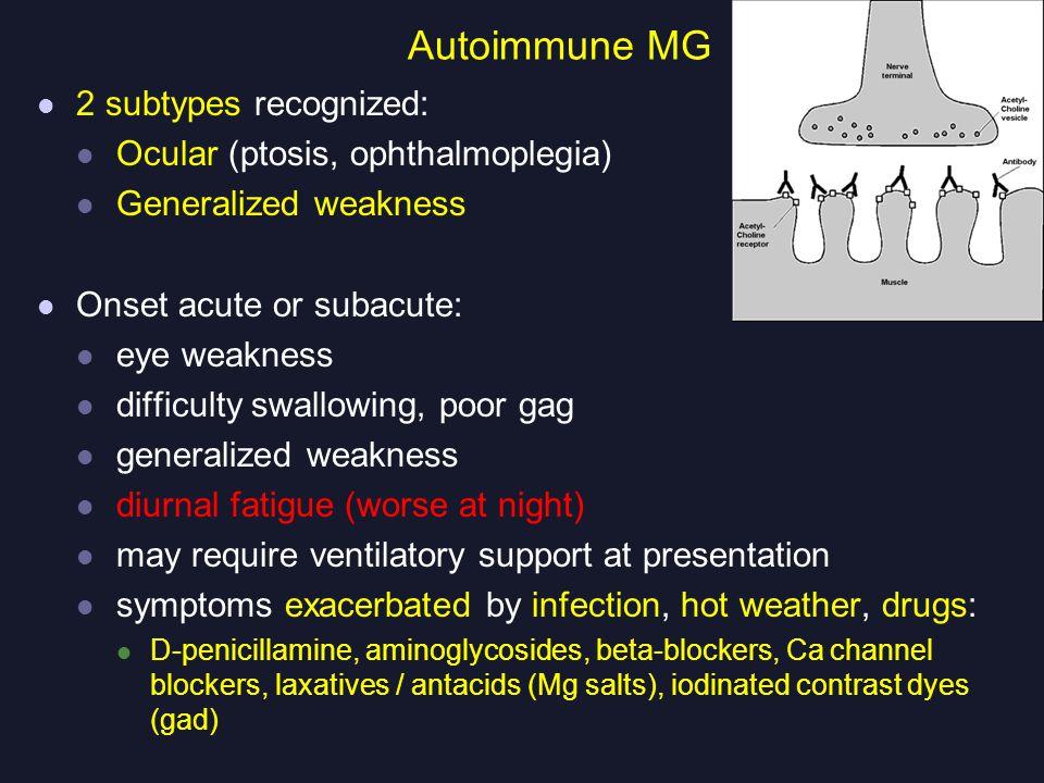 Autoimmune MG 2 subtypes recognized: Ocular (ptosis, ophthalmoplegia)