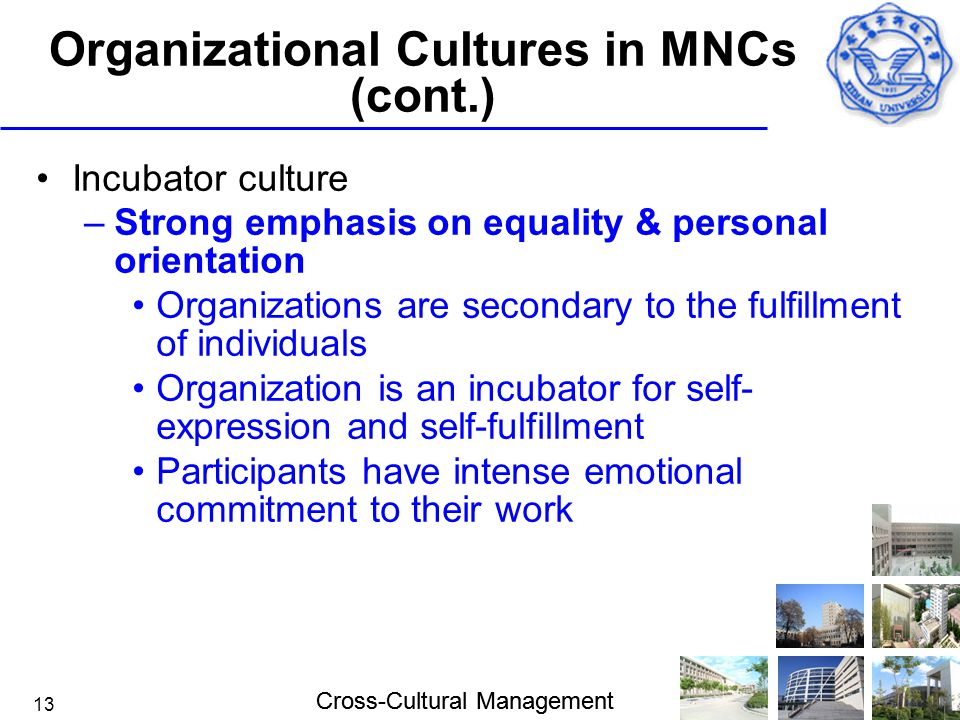 Organizational Cultures in MNCs (cont.)