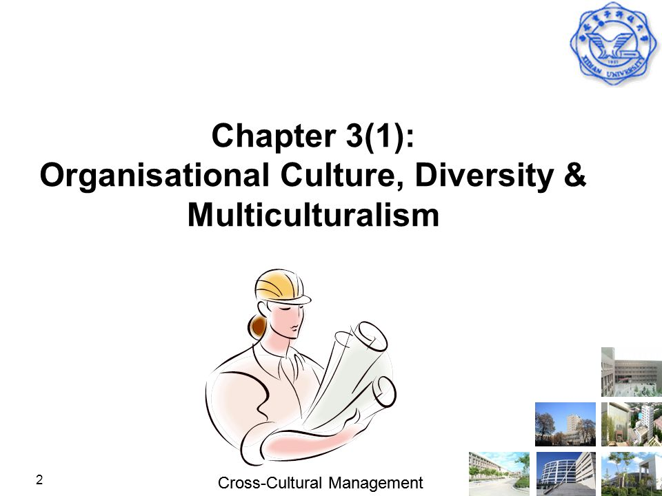 Chapter 3(1): Organisational Culture, Diversity & Multiculturalism