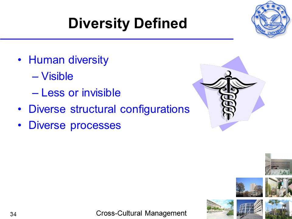 Diversity Defined Human diversity Visible Less or invisible