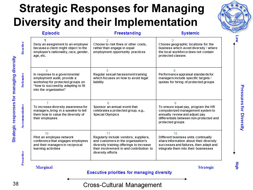 Strategic Responses for Managing Diversity and their Implementation