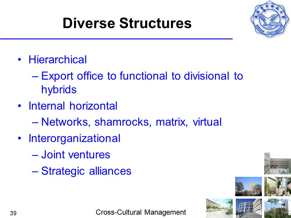 Diverse Structures Hierarchical