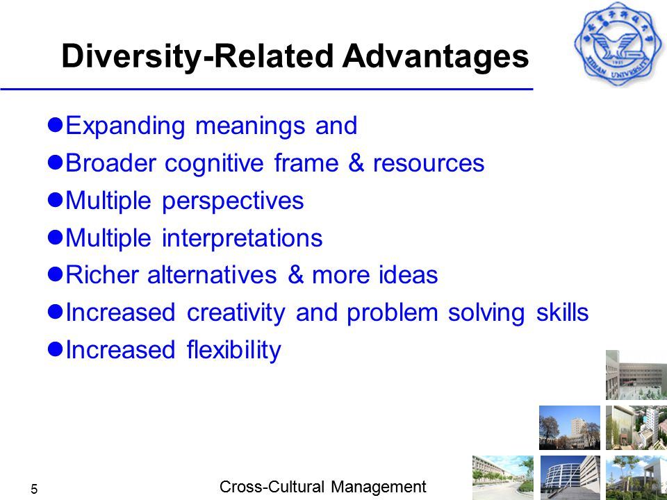 Diversity-Related Advantages