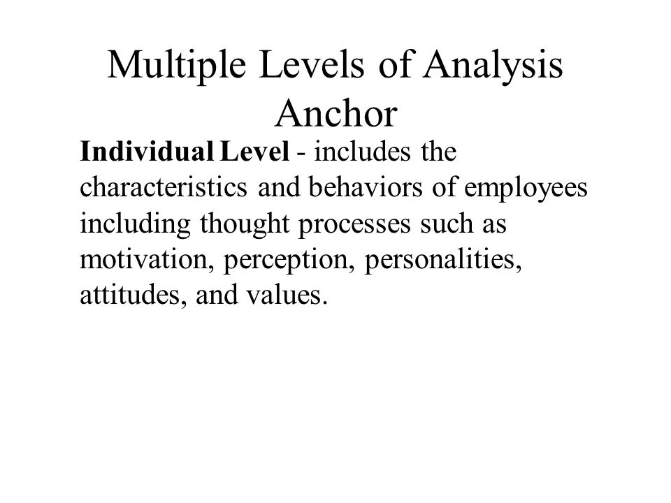 Multiple Levels of Analysis Anchor