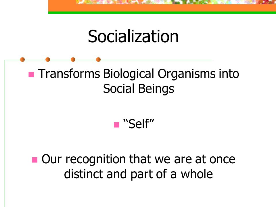 Socialization Transforms Biological Organisms into Social Beings