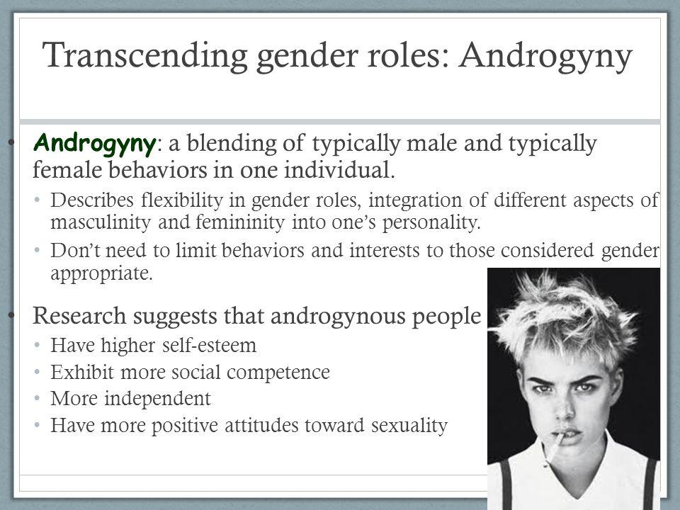 Transcending gender roles: Androgyny