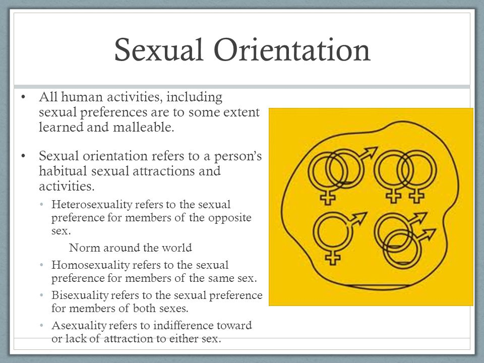 Sexual Orientation All human activities, including sexual preferences are to some extent learned and malleable.