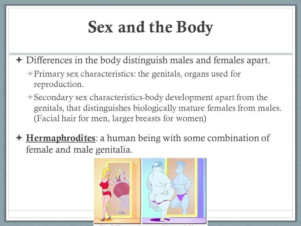 Sex and the Body Differences in the body distinguish males and females apart.