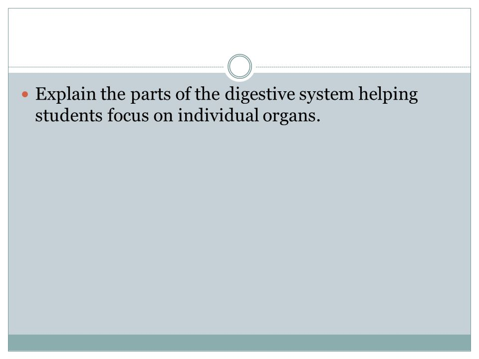 Explain the parts of the digestive system helping students focus on individual organs.