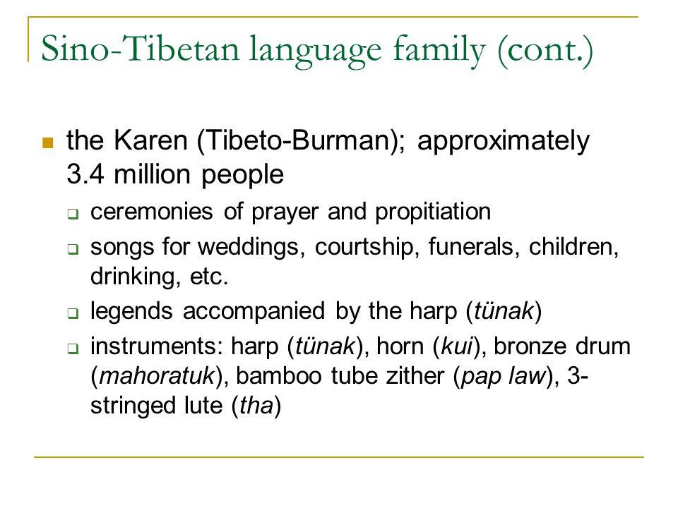 Sino-Tibetan language family (cont.)